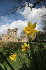 Ashby Castle - English Heritage