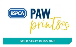 Gold paw print award from the RSPCA for our stray dog service