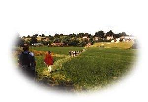 Swannington Village