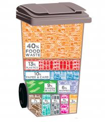 Whats in Your Bin