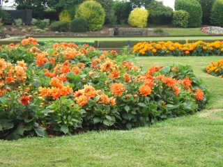 Whitwick park - flower bed