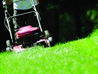 Grounds maintenance for web